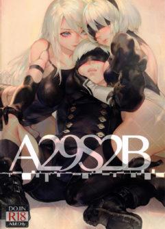 A29S2B