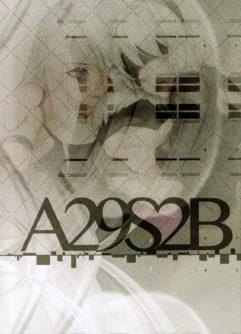 A29S2B - Foto 2