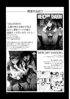 MERCURY SHADOW 2 - Foto 24